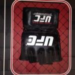 Custom Framed UFC Glove